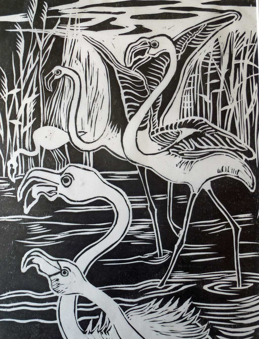 Flamingoes in black and white